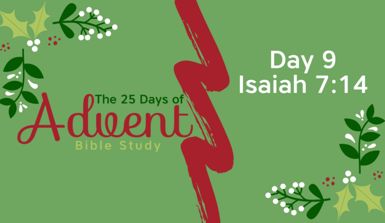 25 Days of Advent Bible Study Series {Day 9}