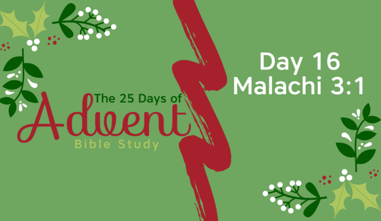 25 Days of Advent Bible Study Series {Day 16}
